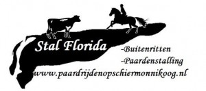 logo voor website stal florida